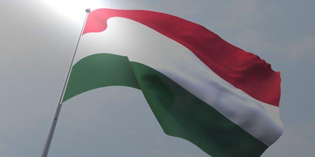 Ungarische Fahne vor dunkelgrauem Hintergrund