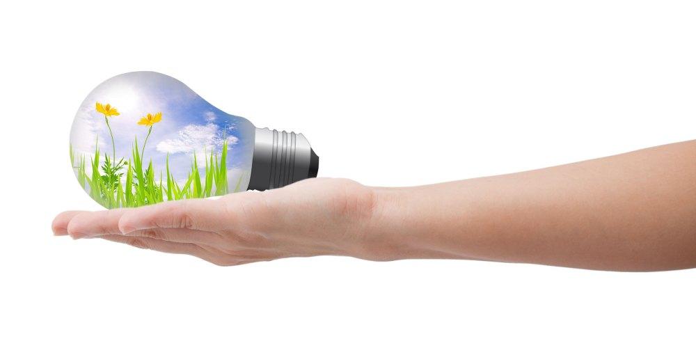 Glühbirne mit grünen Pflanzen und blauem Himmel in einer menschlichen Hand