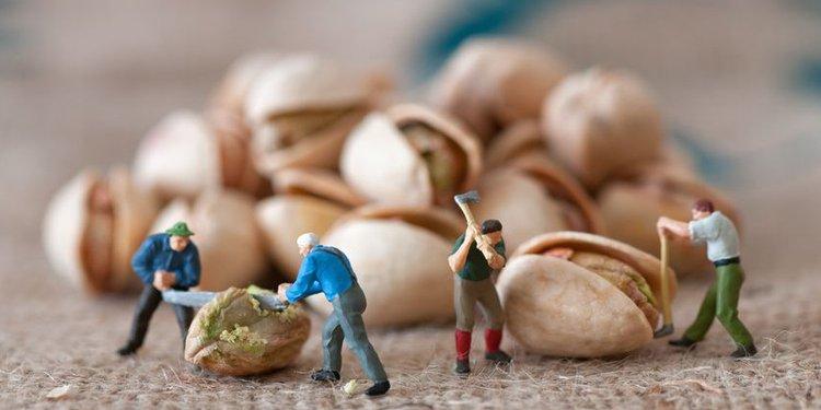 Miniatur-Figuren Arbeiter zerlegen Nüsse
