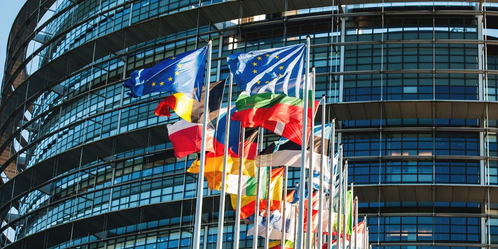 Fahnen der EU und EU-Länder vor einer Glasfassade (Europäisches Parlament)