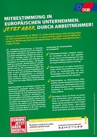 Vorschaubild factsheet Mitbestimmung