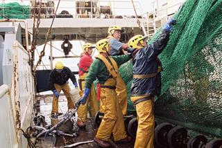 An Bord der Jack Abry 2 im Schottischen Meer. Einladen des Schleppnetzes.