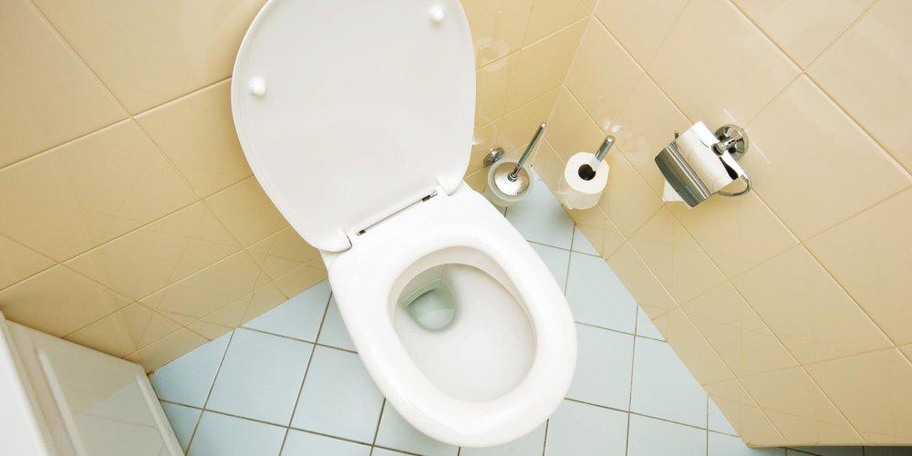 dgb bundesvorstand weg zur toilette ja notdurft nein. Black Bedroom Furniture Sets. Home Design Ideas