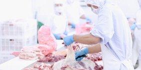 Arbeiter im Schlathof zerlegen Fleisch