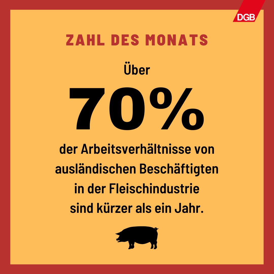 Text: Zahl des Monats - Über 70 Prozent der Arbeitsverhältnisse von ausländischen Beschäftigten in der Fleischindustrie sind kürzer als ein Jahr.
