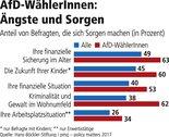 Grafik Sorgen WählerInnen
