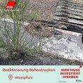 Lahmgelegte Bahnstrecke in der Westpfalz