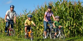 Familie (Eltern, zwei Kinder) mit Fahrradhelmen auf Fahrrädern vor Maisfeld fahrend (Sonnenschein, blauer Himmel)